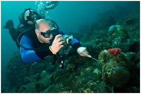 diver6