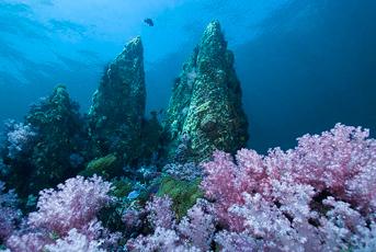 Stonehenge diving Koh Lipe Thailand