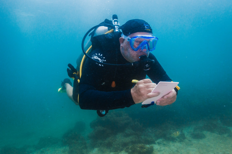 PADI Advanced Open Water Course Fish Identifical Koh Lipe Thailand
