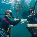 Divers ascending near reef koh lipe thailand