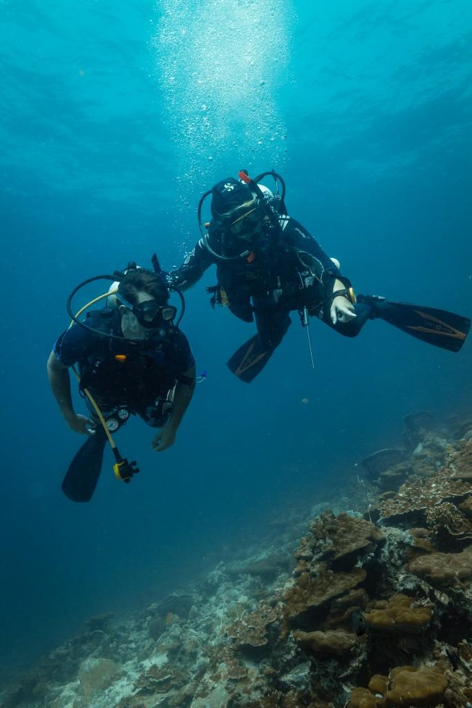PADI Discover SCUBA Dive guiding Koh Lipe Thailand