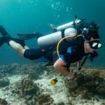 PADI Open Water Dives Koh Lipe Thailand