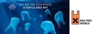 Plastic in Sea Ocean Clean Up